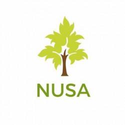 Nusa Inisiatif